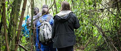 bwindi-gorilla-trekking1